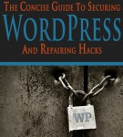 The Concise Guide to Securing WordPress and Repairing Hacks – Now Available